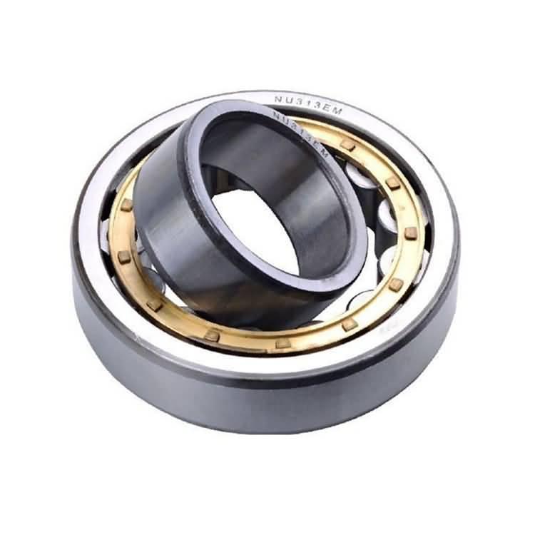 radial full cylindrical roller bearing-1