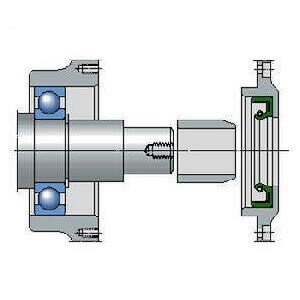 Do you know the two classifications of radial shaft seals with low section height?