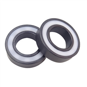 Do you know silicon nitride bearings?